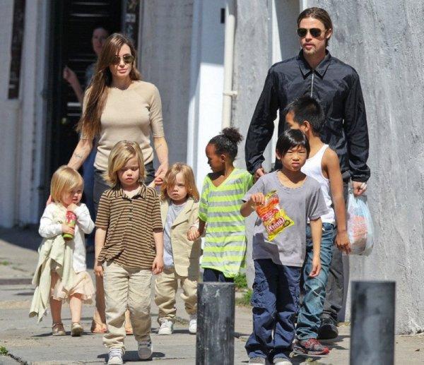СМИ рассказали настоящую причину развода Брэда Питта И Анджелины Джоли