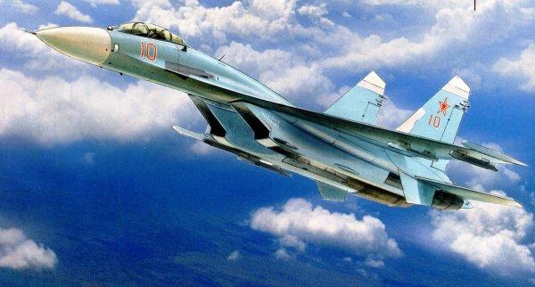 Российский истребитель СУ-27 пролетел в 6 метрах от американского самолета
