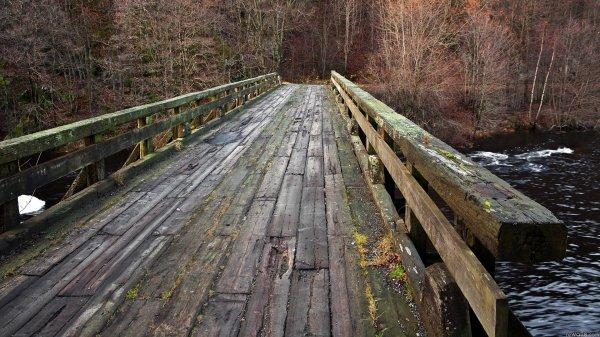 В Татарстане пьяная девушка рано утром спрыгнула с моста в реку