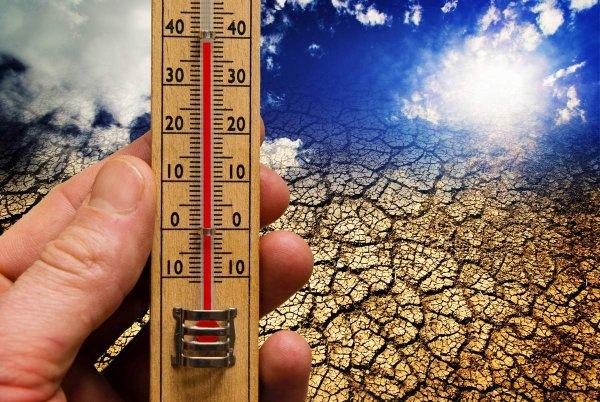 В эти выходные в Челябинске ожидается температура до +24 °C