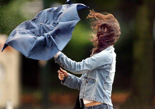 29 мая в Ивановской области ожидаются грозы и сильный ветер