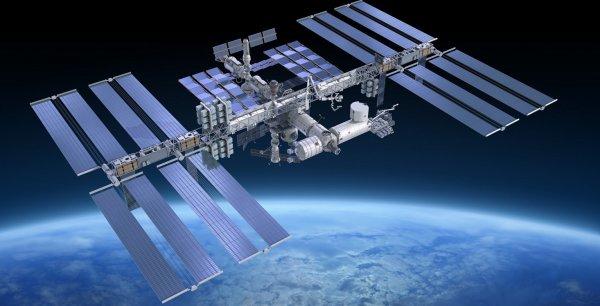 Учёные: В 2018 году астронавты в космосе начнут выпекать хлеб без крошек