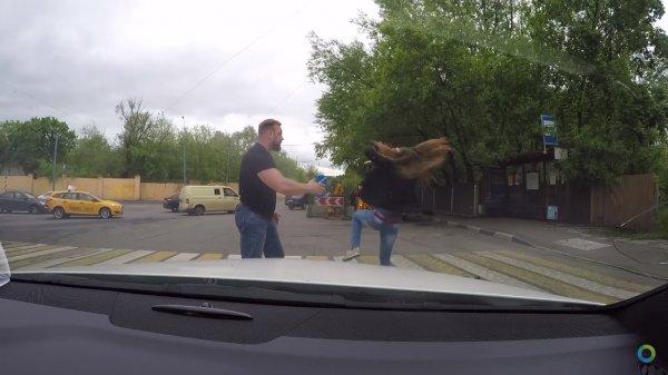 Видео: Девушка нокаутировала накаченного водителя, который её чуть не сбил на дороге