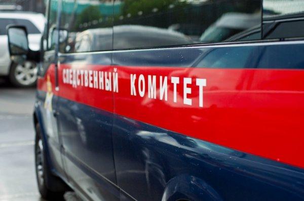 По делу о ДТП в Татарстане задержана директор компании-перевозчика