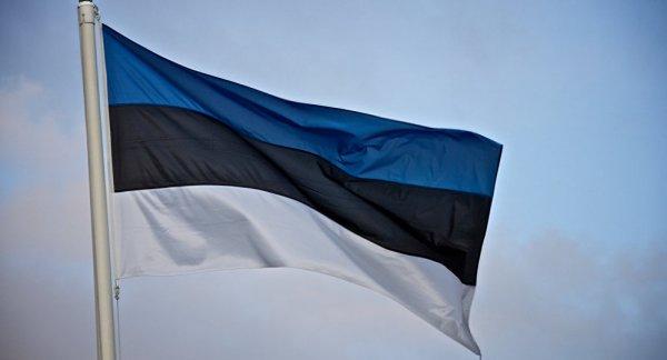 Отец девочки, которую забрали из российской семьи в Эстонии, рассказал подробности
