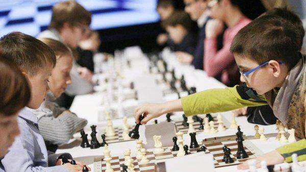 Играть в шахматы в школах рекомендует министр Васильева
