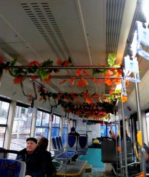 В Ростове появился «осенний» трамвай с листвой в салоне