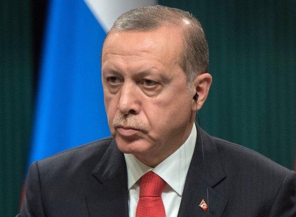 Эрдоган может посетить Россию 22 ноября