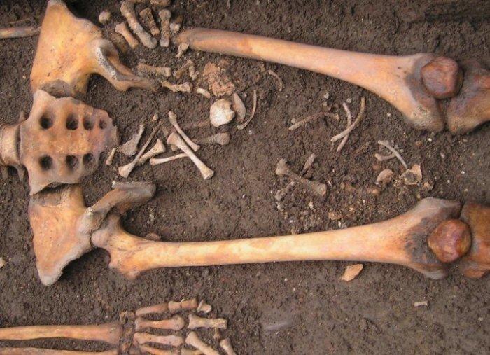 Средневековая женщина родила вмогиле— редкостный случай