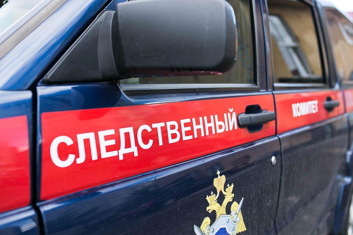ВНовосибирске отыскали тело малыша, вмерзшее вснег