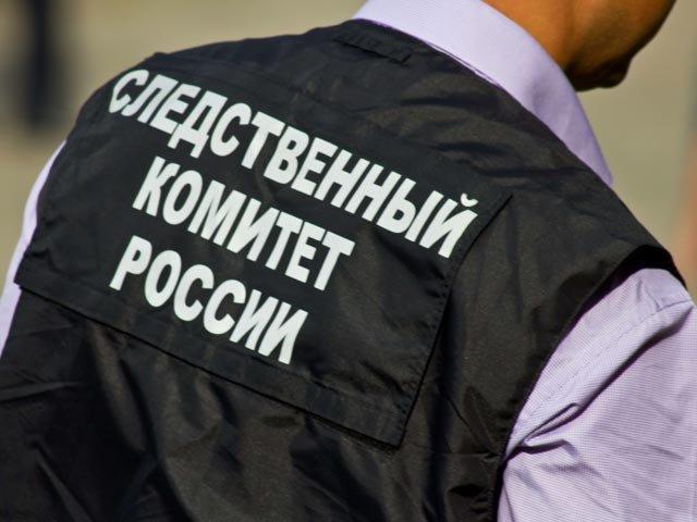 Бастрыкин отдал приказ разобраться впричинах нападения мастифа надевочку вПодмосковье