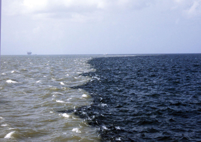 Тихоокеанский рубеж фото стали анальные