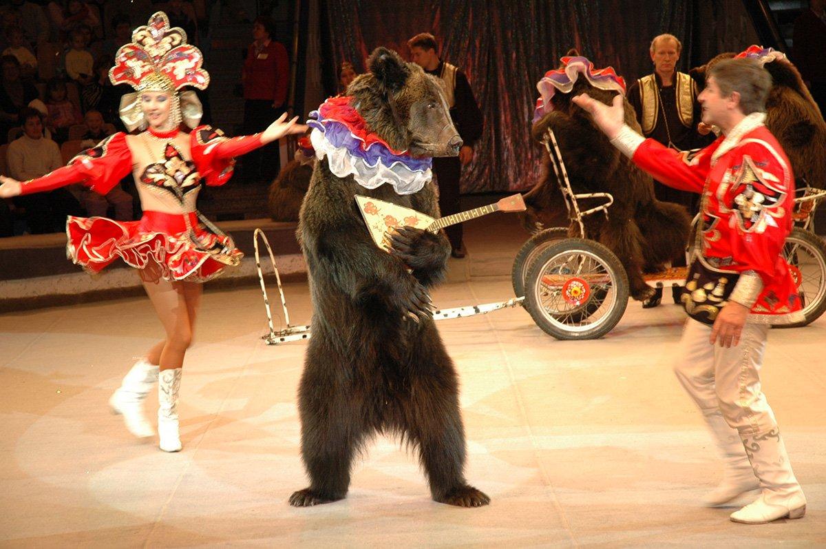 Новым, московский цирк открытки