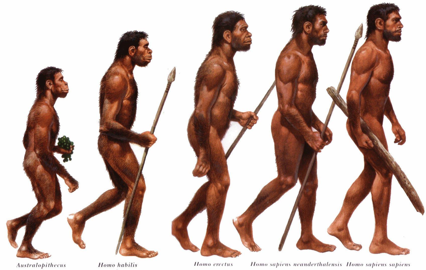 парк картинки первого современного человека они