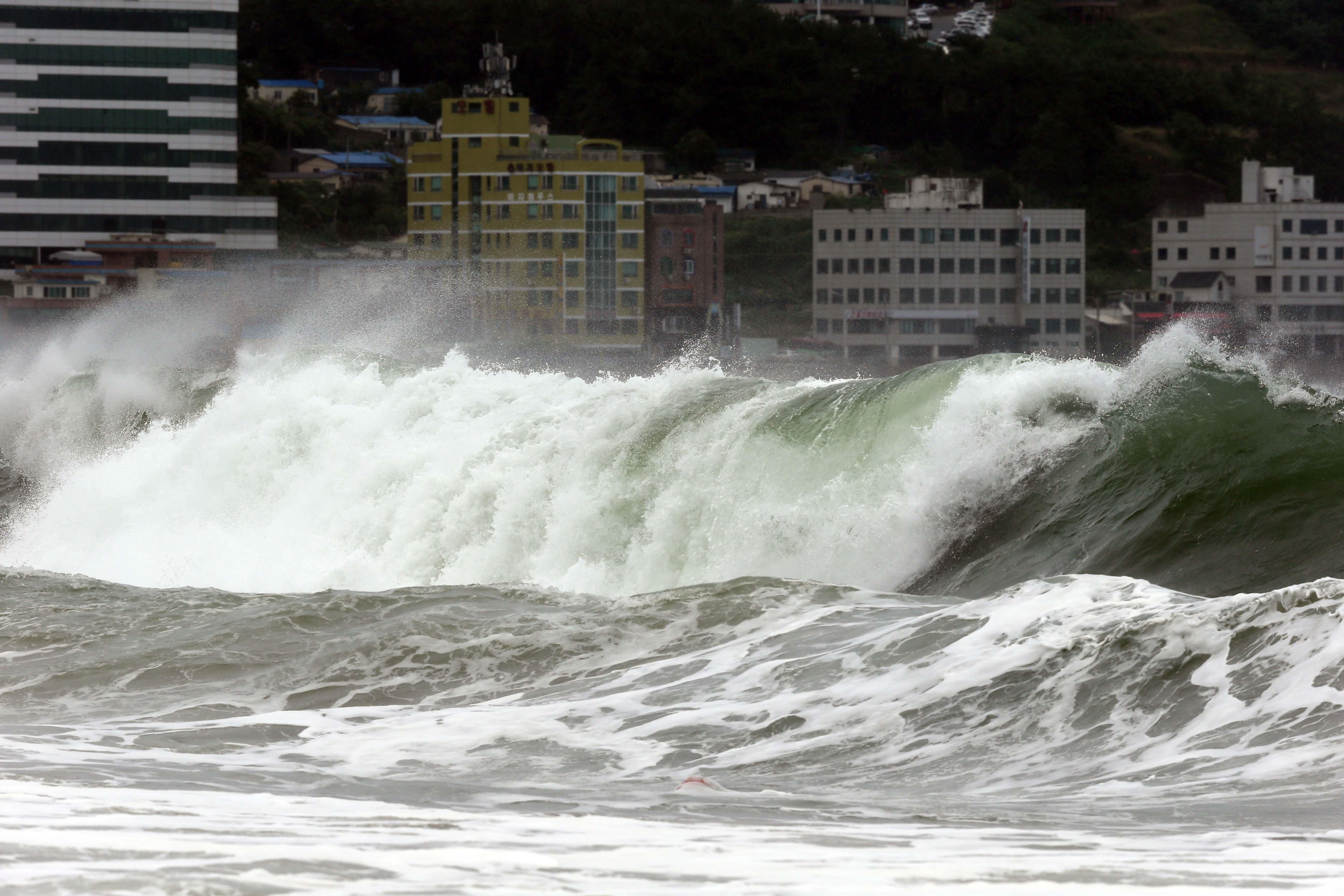 все про тайфуны в картинках