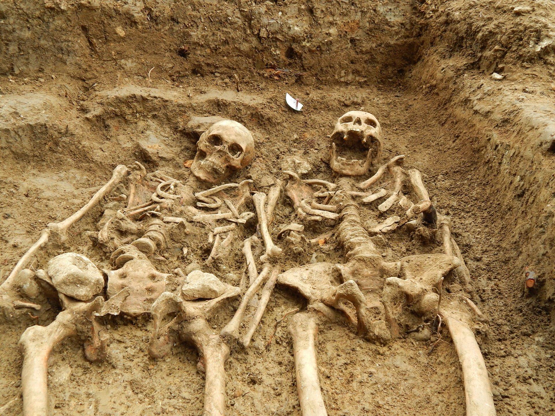 цвету картинки древних людей гигантов билеты словакию