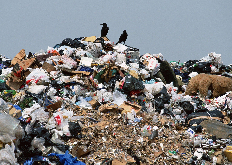 Картинки мусора фото