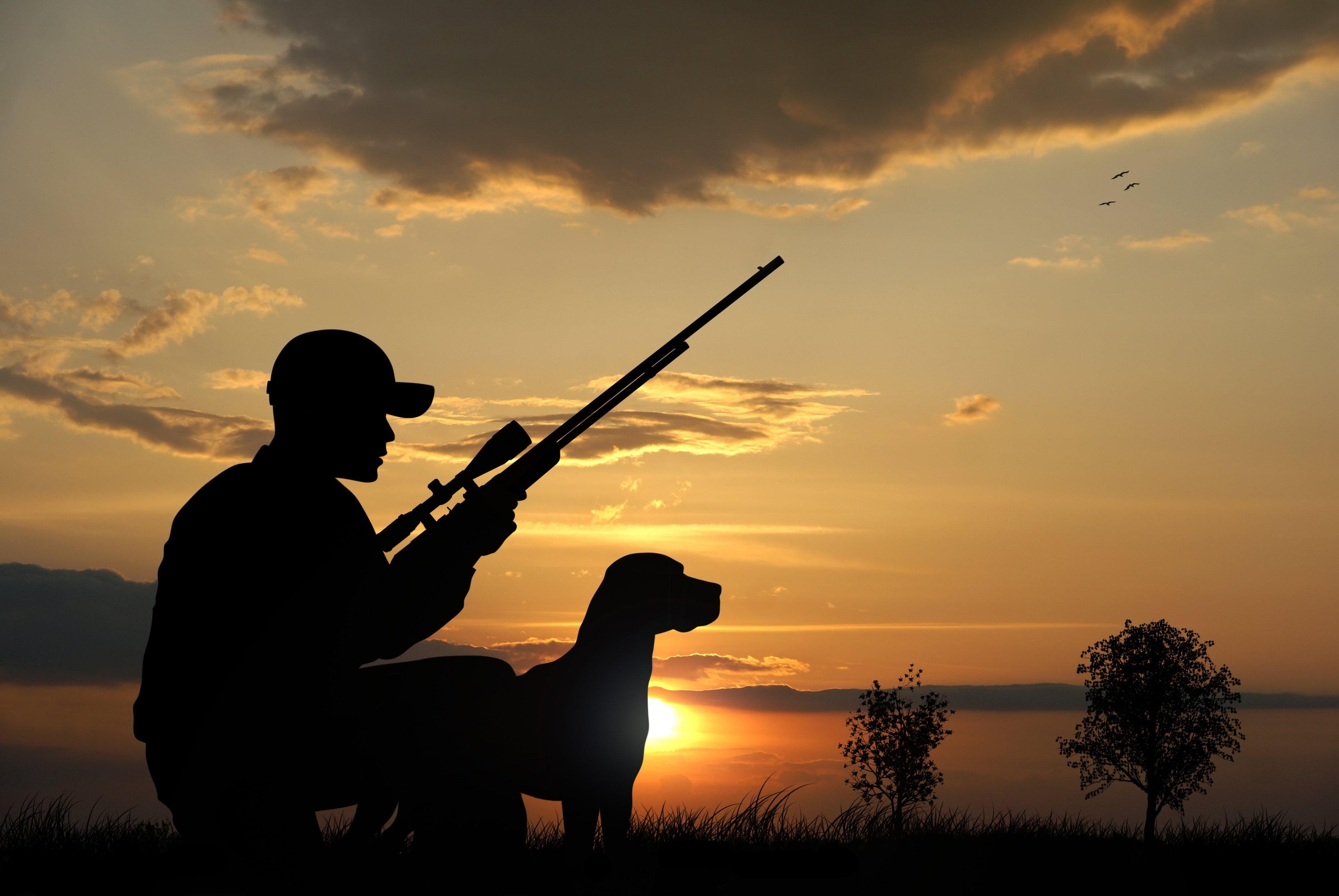 Название картинки, картинки про охотников красивые