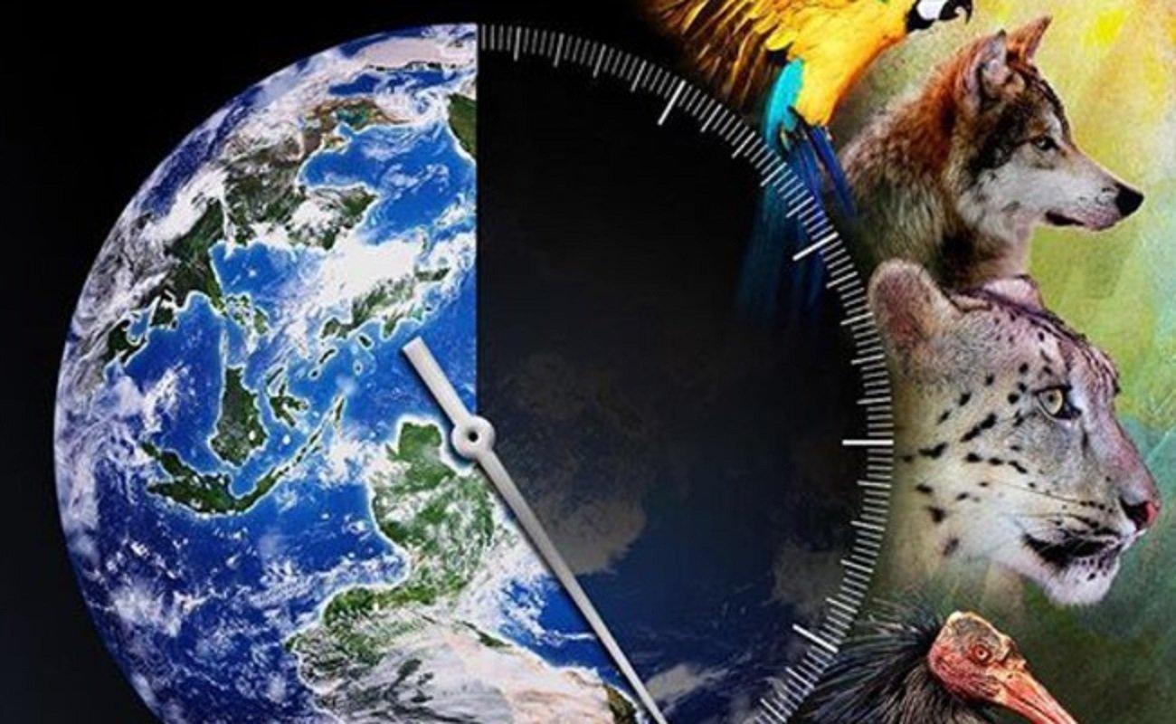 Экология животных в картинках