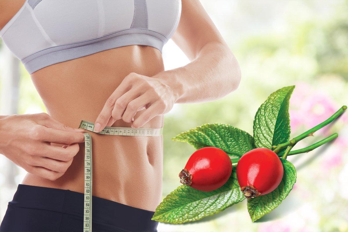 Методика Для Похудения Дома. Простые и эффективные упражнения для снижения веса в домашних условиях