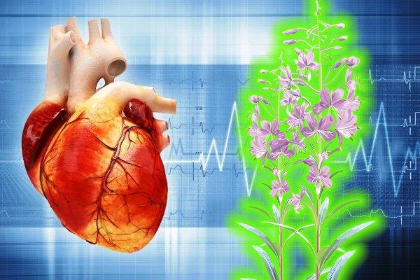 Вылечить сердце за 30 минут: Кардиолог назвал лучший способ борьбы с тахикардией
