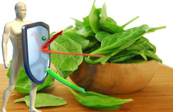 Волшебная зелень: Назван лучший овощ весны для крепкого иммунитета