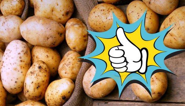 Овощ  Богач повысит имунку за 30 рублей