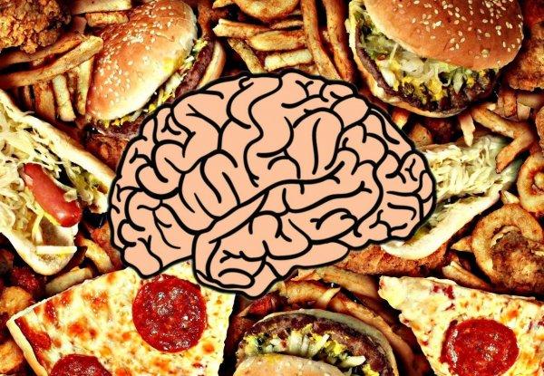 Жирная пища снижает способность к концентрации внимания