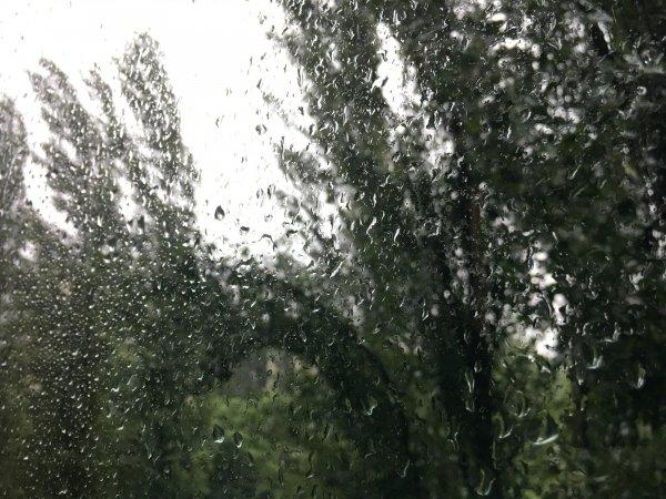 Подмосковный посёлок Нахабино затопило из-за частых ливней